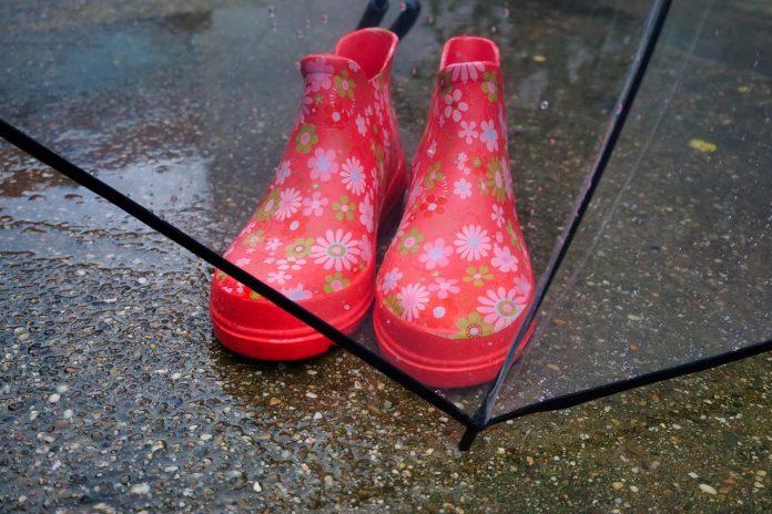 Kalosze na deszcz